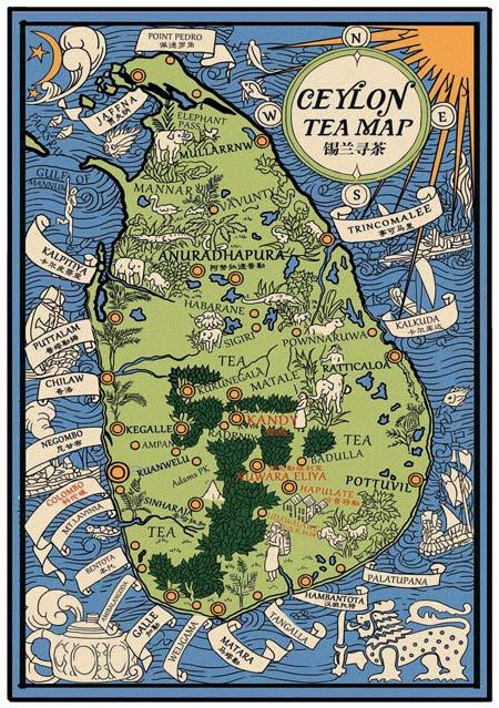 这是一张根据1930 年锡兰地图绘制的参考图,上面标注出斯里兰卡主要茶